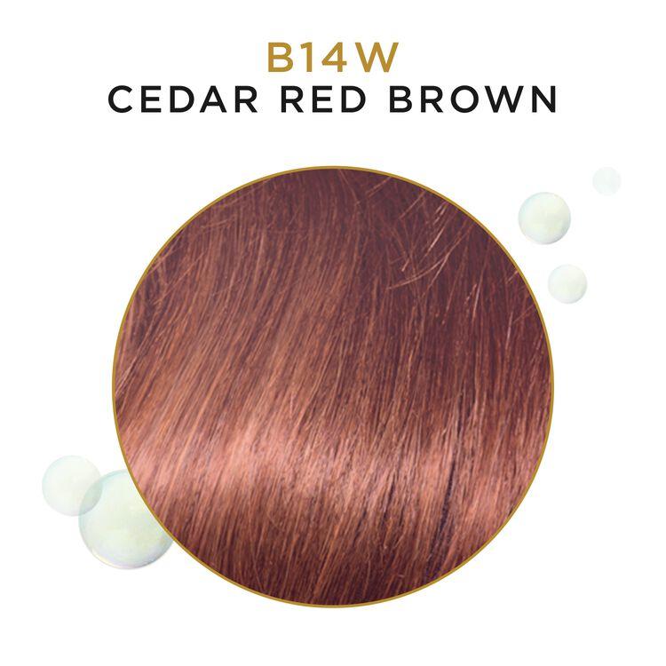 Clairol Semi-Permanent Haircolor Cedar Red Brown