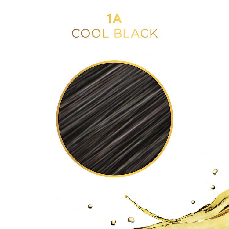 Clairol Pro Liquicolor 51D Black Velvet